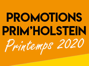 Promo de Printemps en race Holstein !