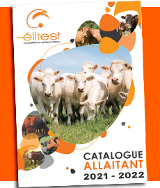 Catalogue Allaitant Elitest
